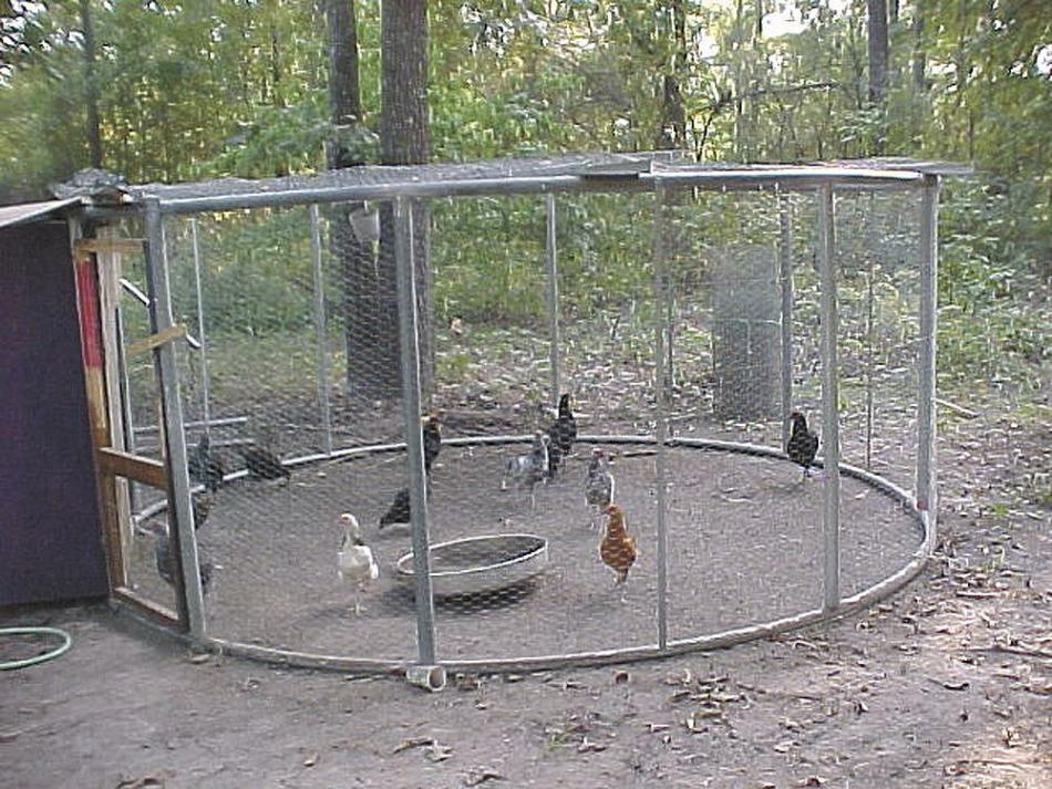 FARM SHOW Trampoline Chicken Coop Easy chicken coop