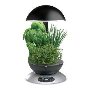 Countertop Herb Gardening Herbs Indoors Herbs Indoor 400 x 300