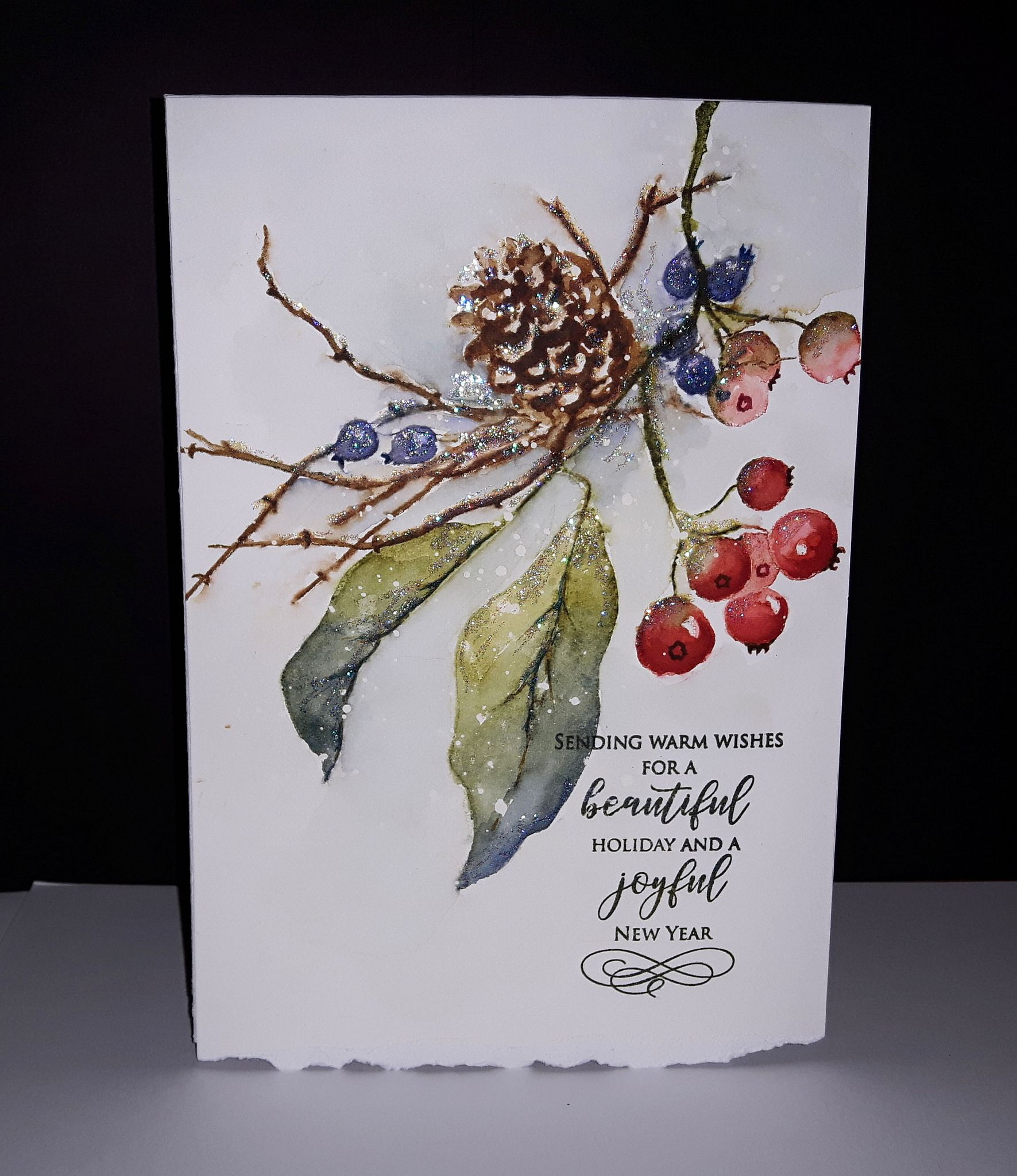 20180915 204420 In 2020 Watercolor Christmas Cards Painted