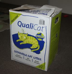 Costco Qualicat Cat Litter Product Review Living Well