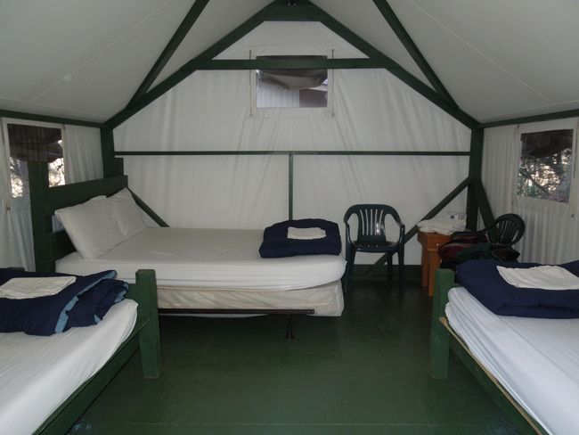 Tent Cabin with Full Bed u0026 2 Twins - Yosemite National Park - very comfortable & Tent Cabin with Full Bed u0026 2 Twins - Yosemite National Park - very ...