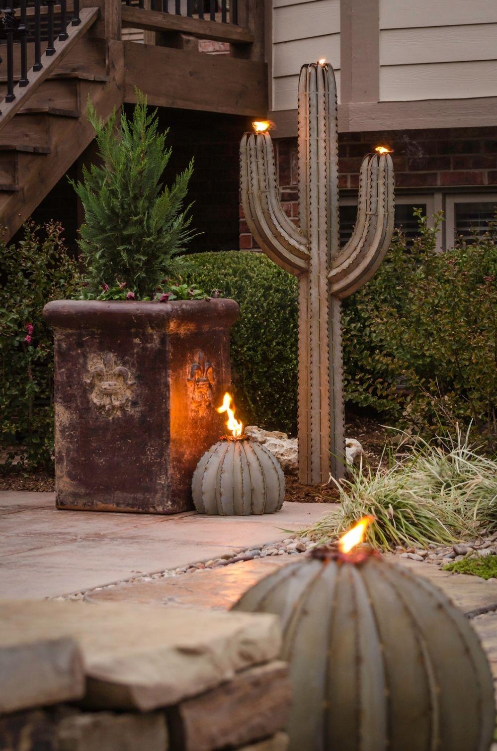 Golden Barrel Cactus Torch By Two Arm Cactus Outdoor Patio