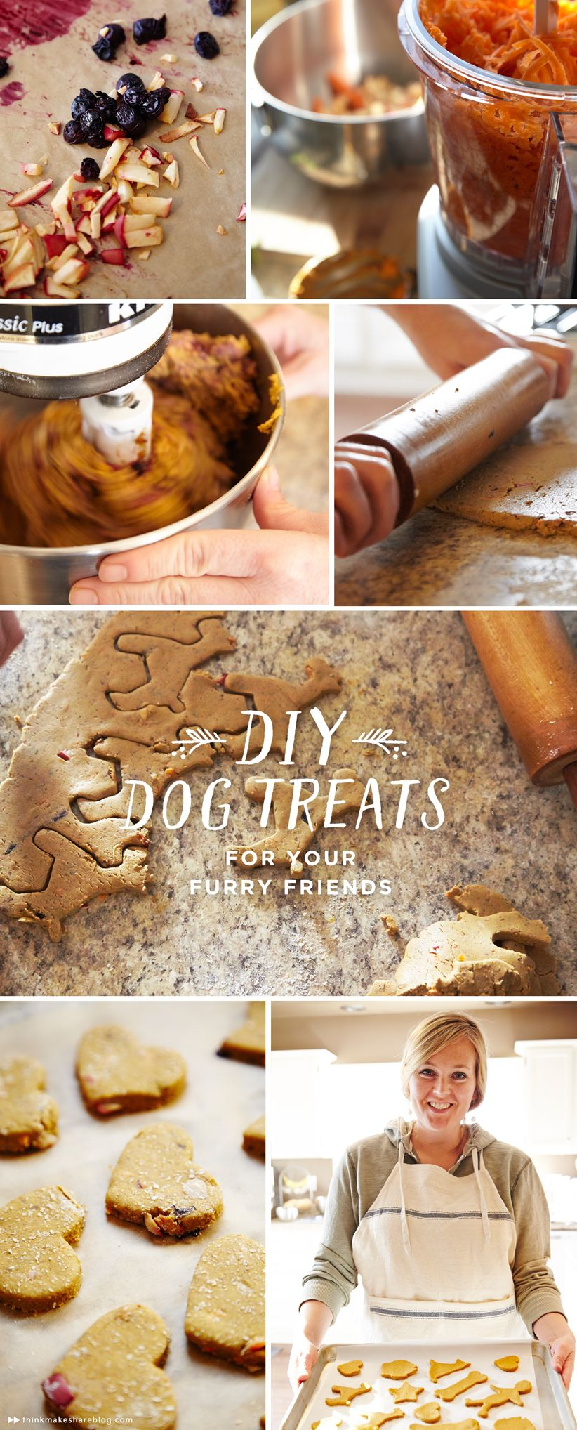 A Holiday Dog Treat Recipe For Our Four Legged Friends Dog Treat