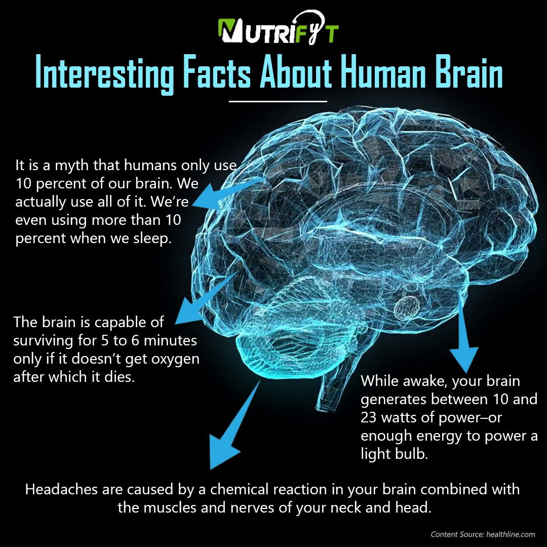 Interesting Facts About Human Brain Brain Mind Love