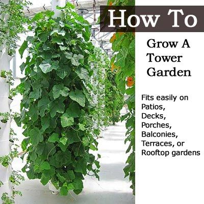 How To Grow A Tower Garden   Tower, Balconies and Porch