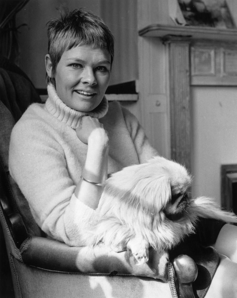 Dame Judy Dench. An amazing talent.