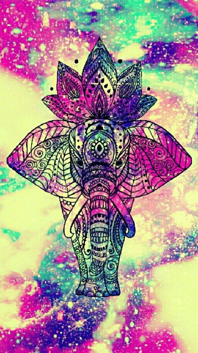 pin by cammi cook on elephants elephant wallpaper