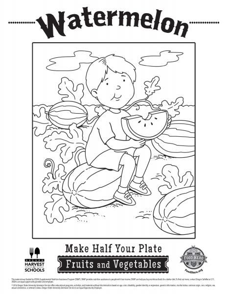coloring pages food hero watermelon coloring sheets for kids vegetable coloring free