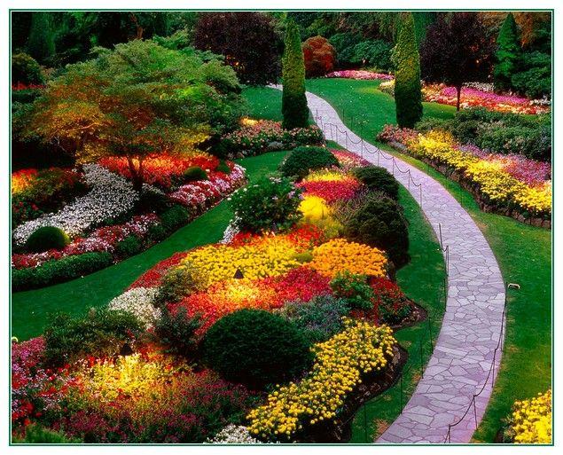 Nice Tips Landscape Front Yard Ideas | Garden landscape ...