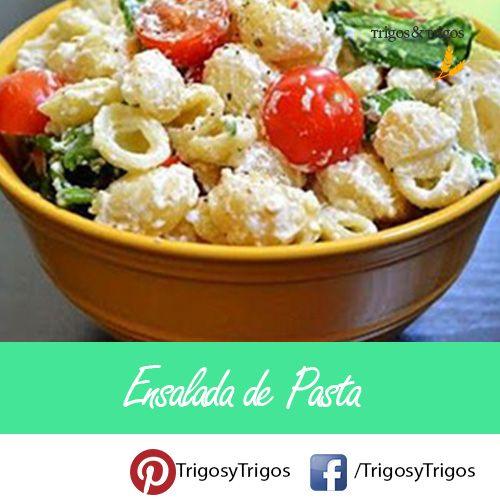Te dejamos la receta de una deliciosa y saludable ensalada de pasta.  #Ensalada #Pasta