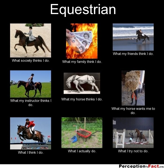 Equestrian... - What people think I do, what I really do ...