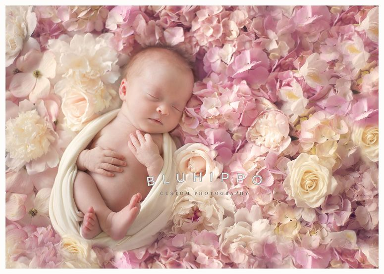 Pittsburgh Lifestyle Newborn Photographer {Butterfly Wishes and Flower Petal Kisses} by BLUHIPPO Photography