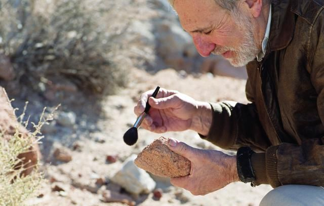 Learn about becoming an archaeologist. What does an archaeologist do, how much does one earn, what is the job outlook for this field and what are the educational requirements?