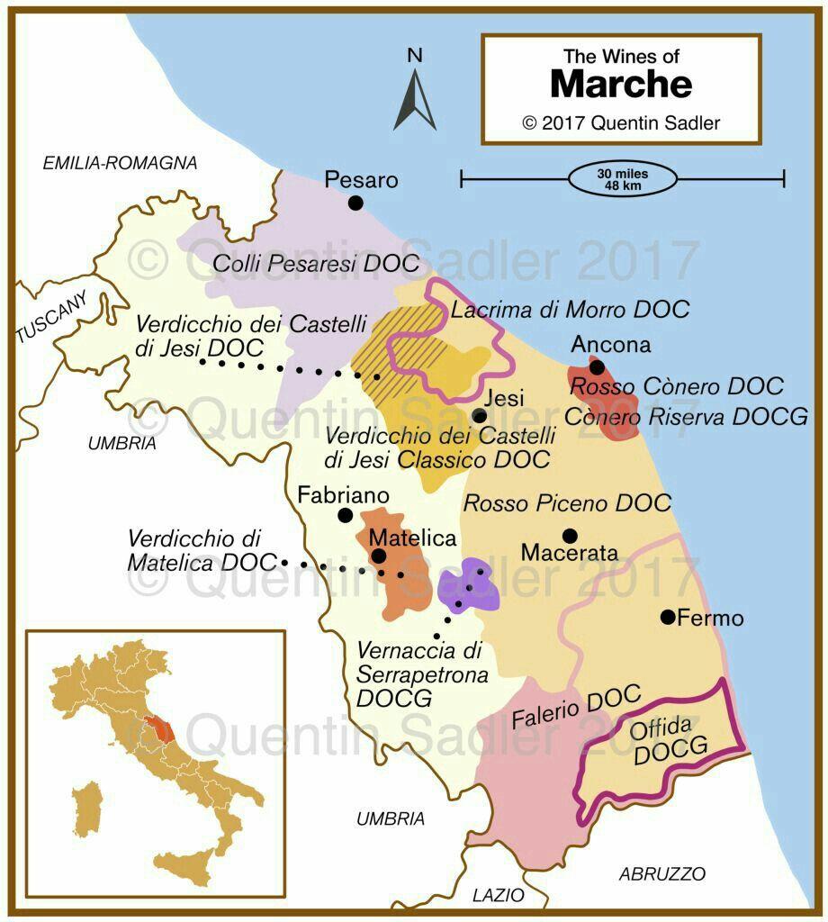 Wine Map Of Marche Italy Wine Basics