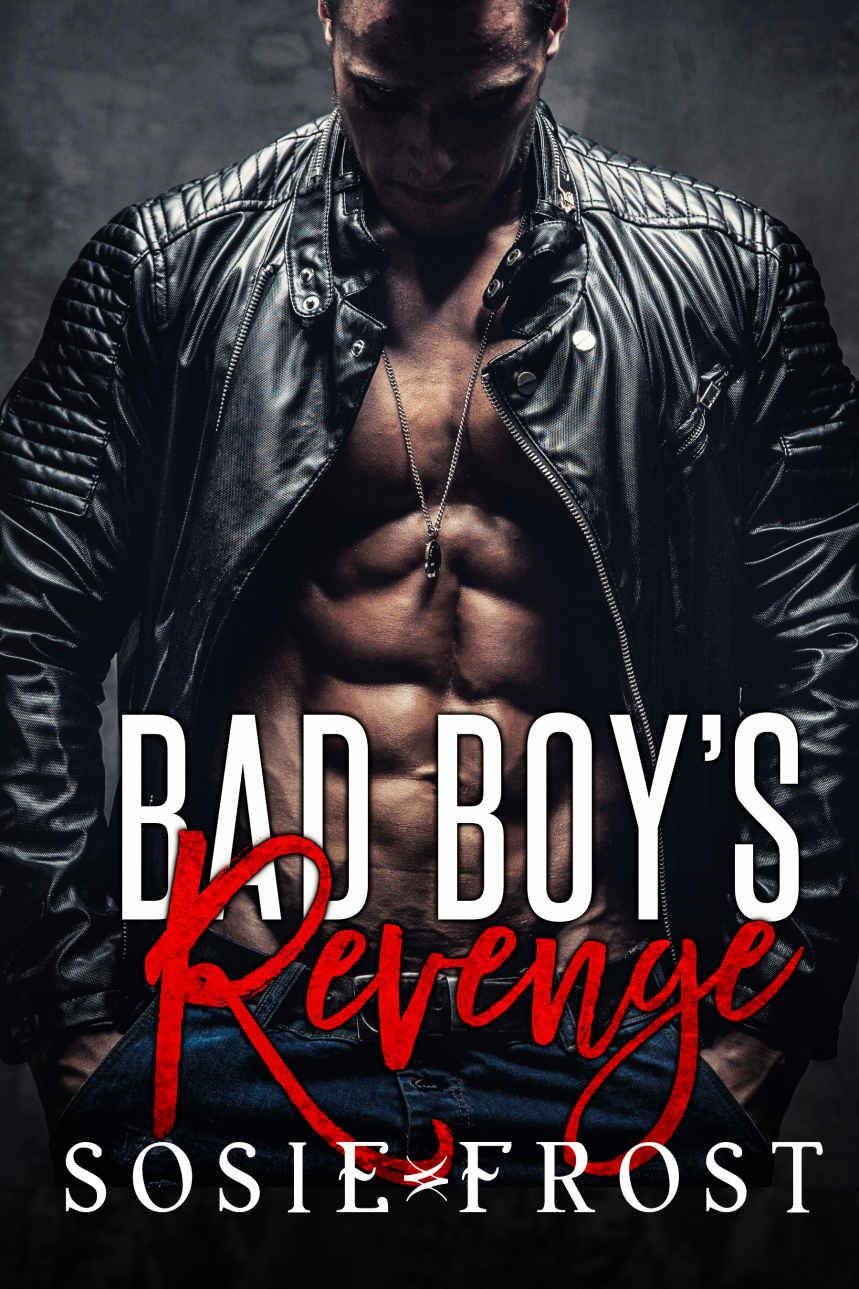 bad boy s revenge kindle edition by sosie frost literature  bad boy a memoir chapter summaries bad boy s revenge by sosie frost