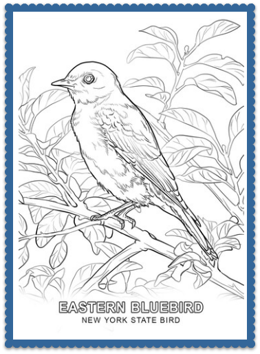 State Bird Coloring Pages By Usa Facts For Kids Bird Coloring Pages Flower Coloring Pages Flag Coloring Pages