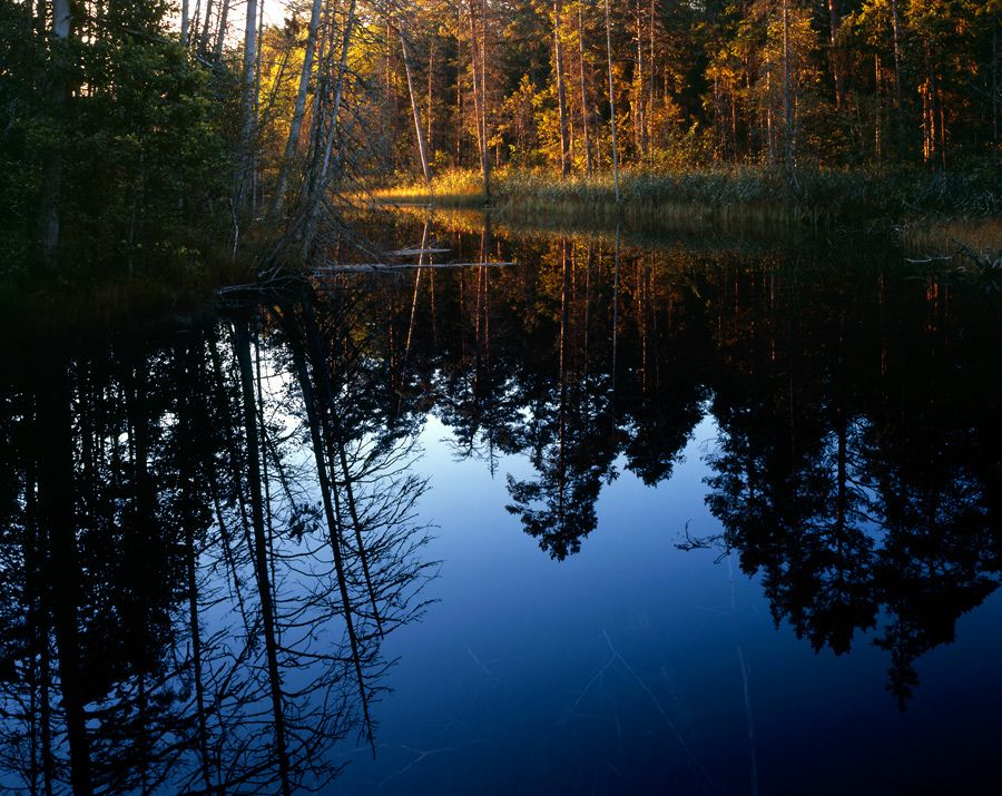 CALM RIVER REFLECTION | Stock Photos by Romeo Koitmäe Toyo … | Flickr - Photo Sharing!