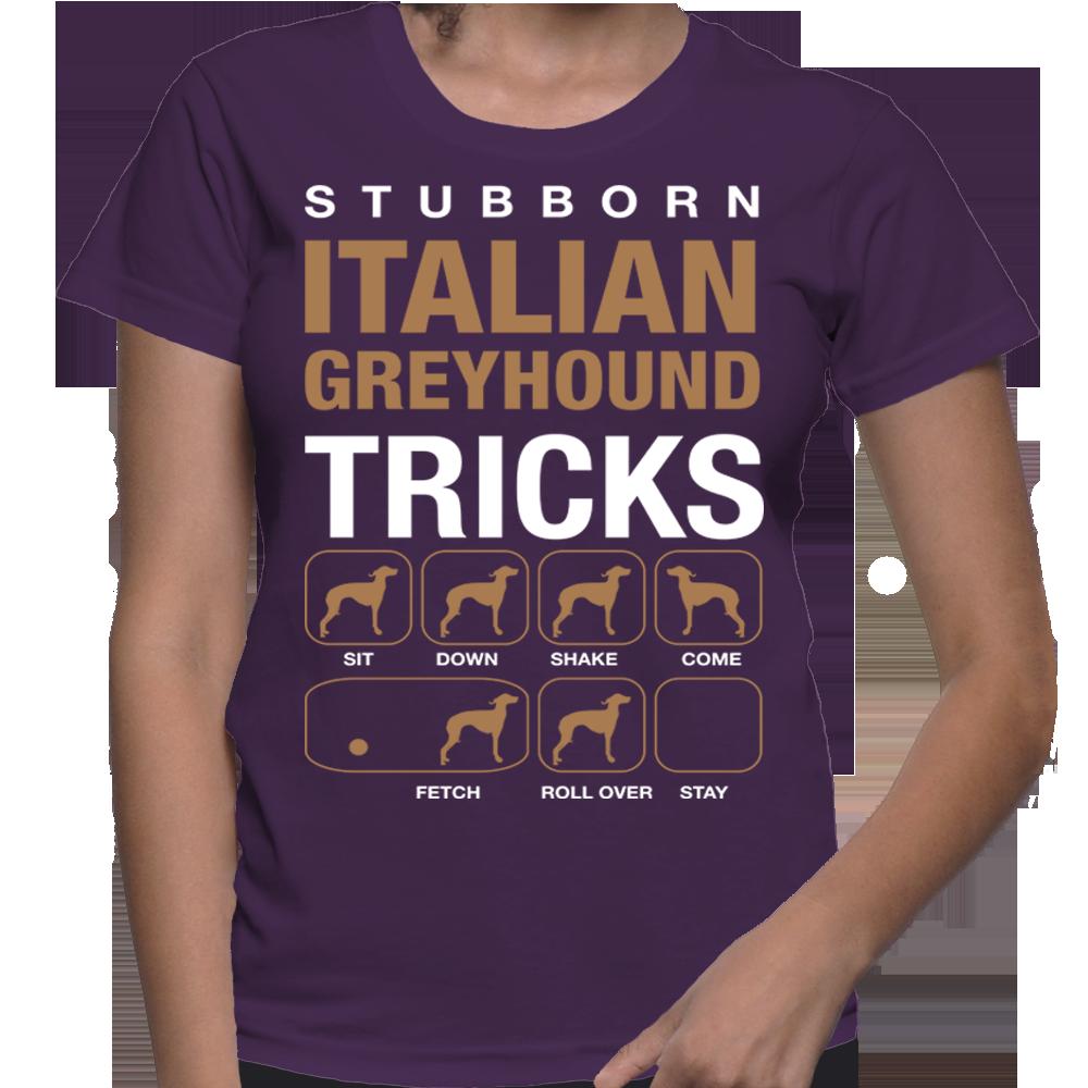 Dogs Stubborn Italian Greyhound Tricks Teach dog to come