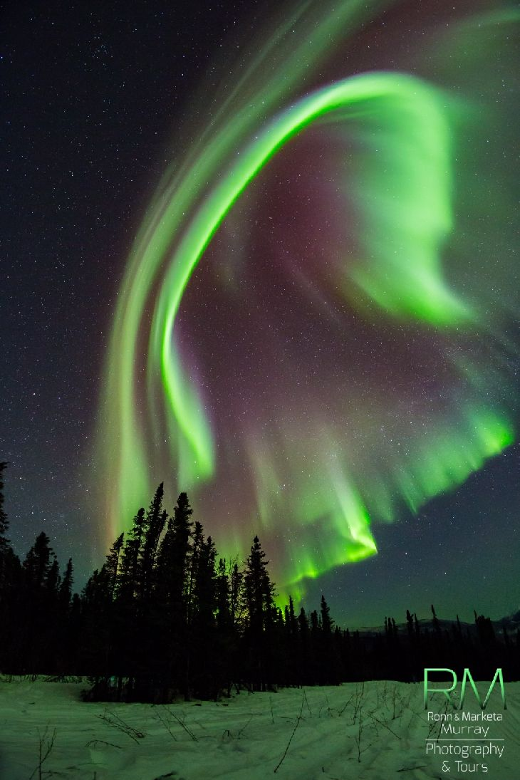 Aurora Fairbanks Alaska Northern Lights Amp Starry