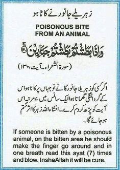 Pin On Quraan Heals