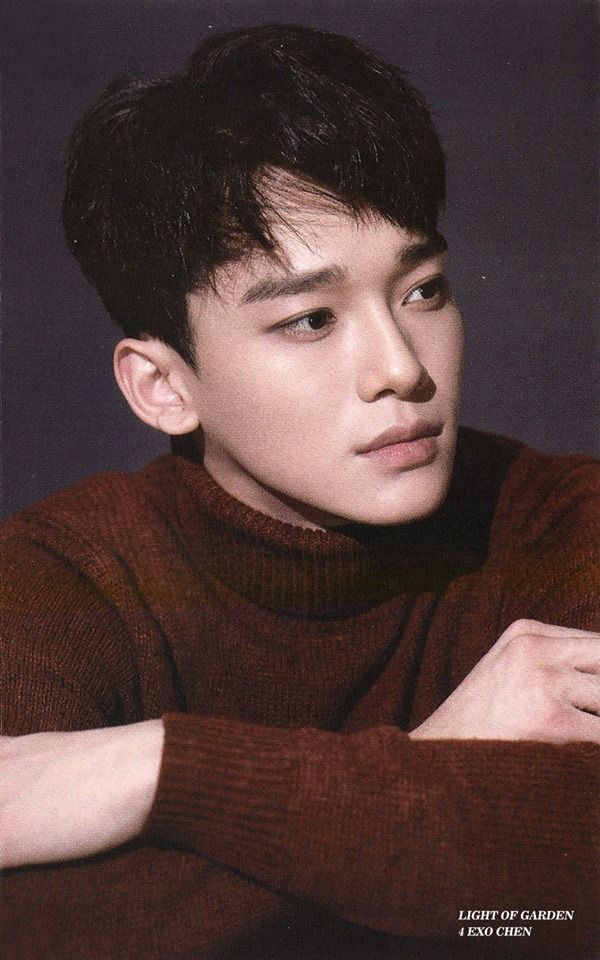 Chen For Sing For You Official Goods Photocard Sehun Chen