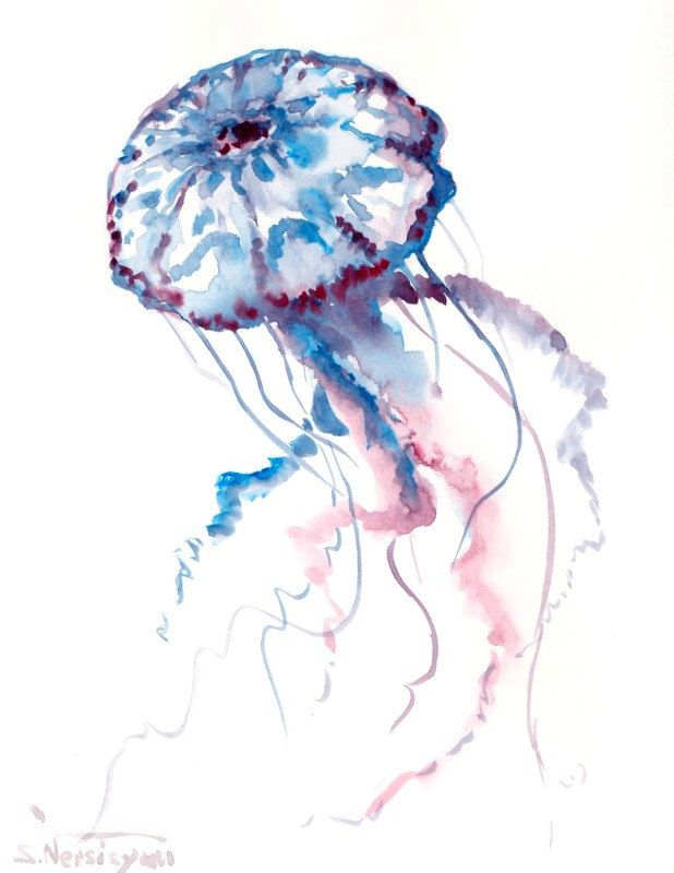 Blue Jelly Fish Original Watercolor Painting 10 X By Originalonly