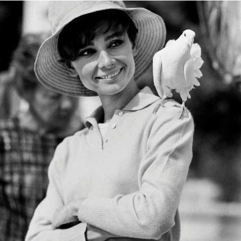 Audrey on the set of 'Two for the Road' St. Tropez 1967 by © Terry O'Neill