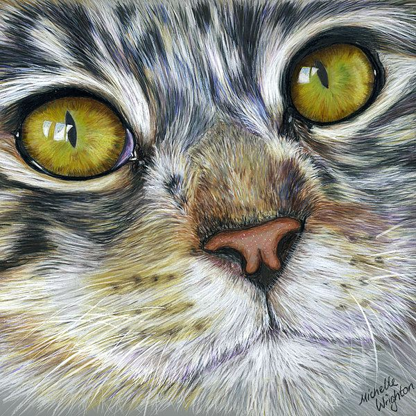 Stunning Cat Painting Art Print by Michelle Wrighton