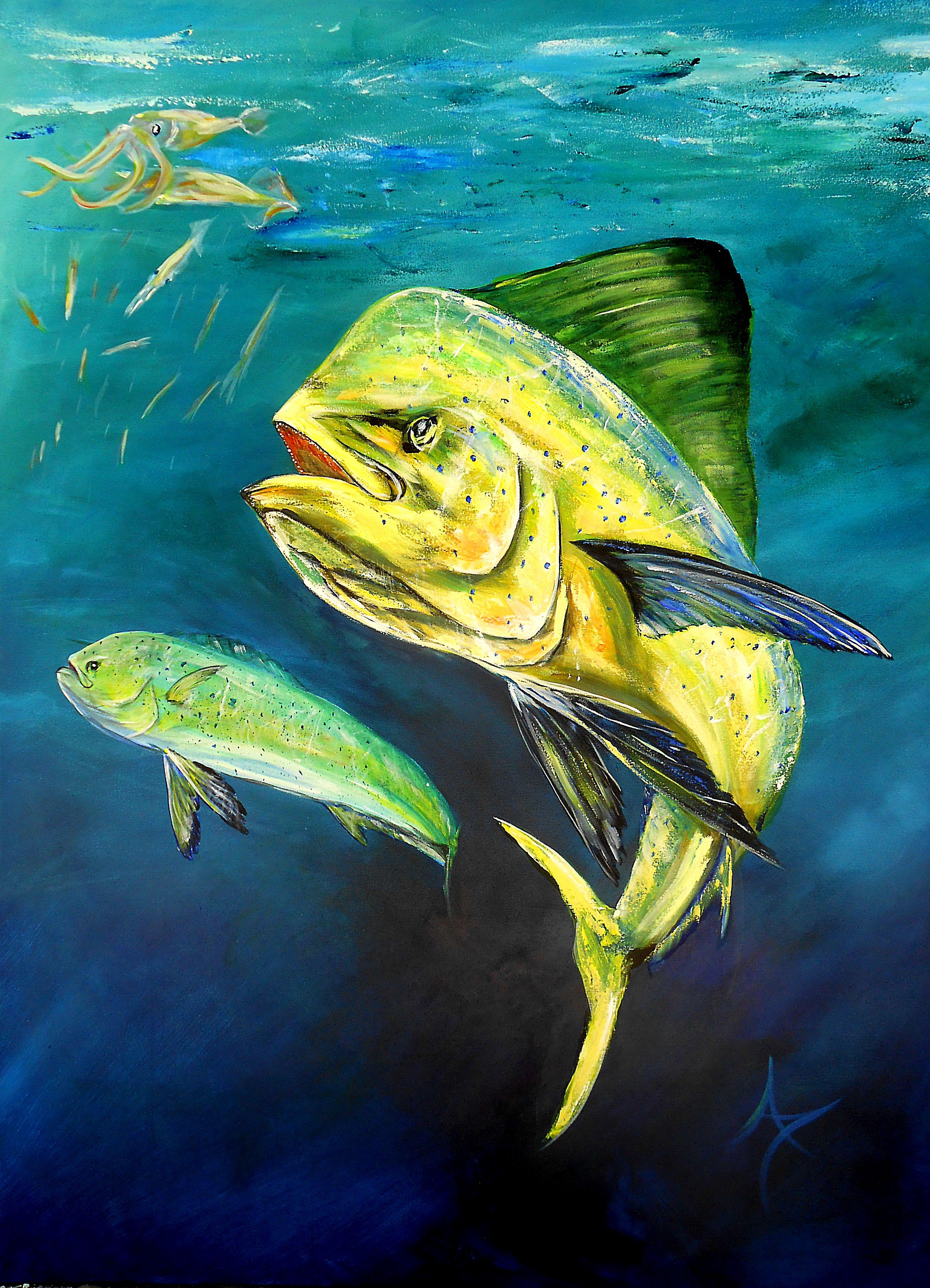 wwwannettetauntoncom mahi mahi fish water ocean beaches florida fish artwork fish art