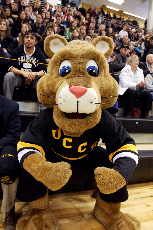 Uccs Mountain Lions Lions Mascot Mountain Lion