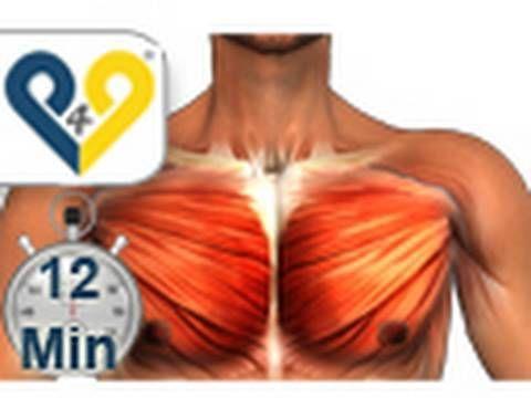 Brustmuskeltraining