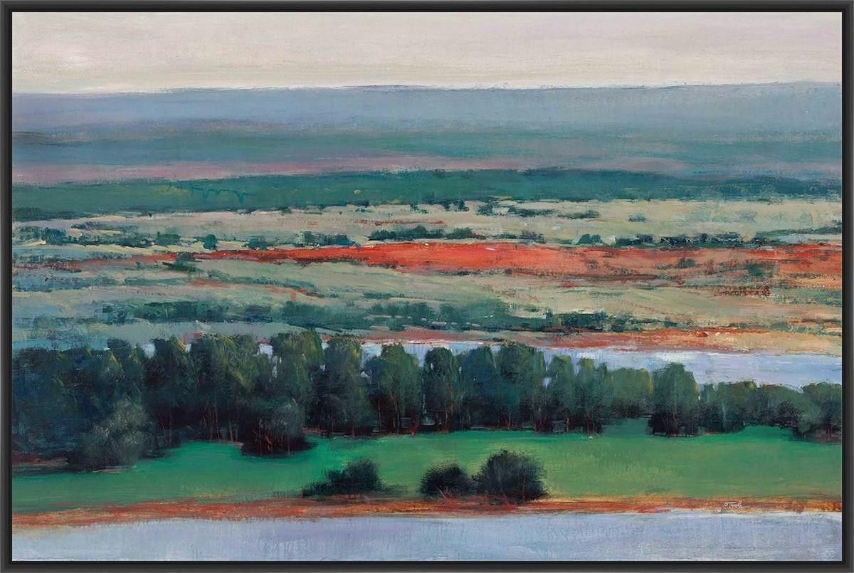 BIRDS EYE VIEW 22L X 28H Floater Framed Art Giclee Wrapped Canvas ...