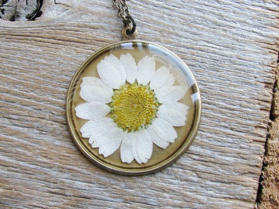 White Daisy Necklace Real Pressed Flower Jewelry By