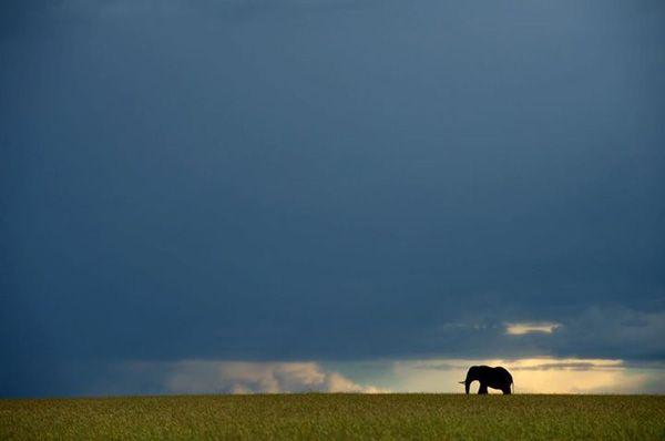 Christian Baillet vous emmène découvrir l'Afrique...