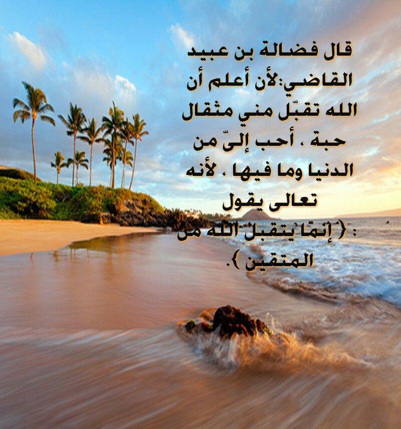 Pin By Dr Talaat Refaat On Pray الصلاة والدعاء والعلم الشرعي Quran Arabic Words Words Of Wisdom