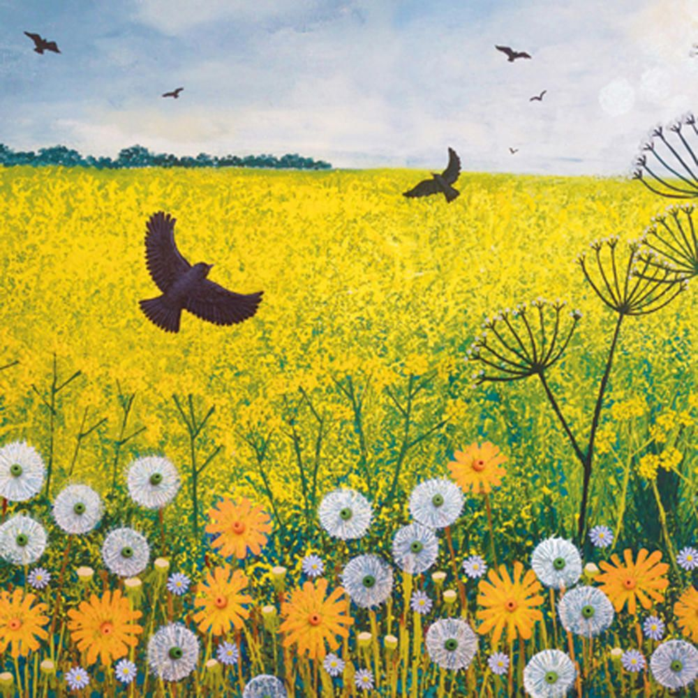 flying over golden fields square blank greeting card
