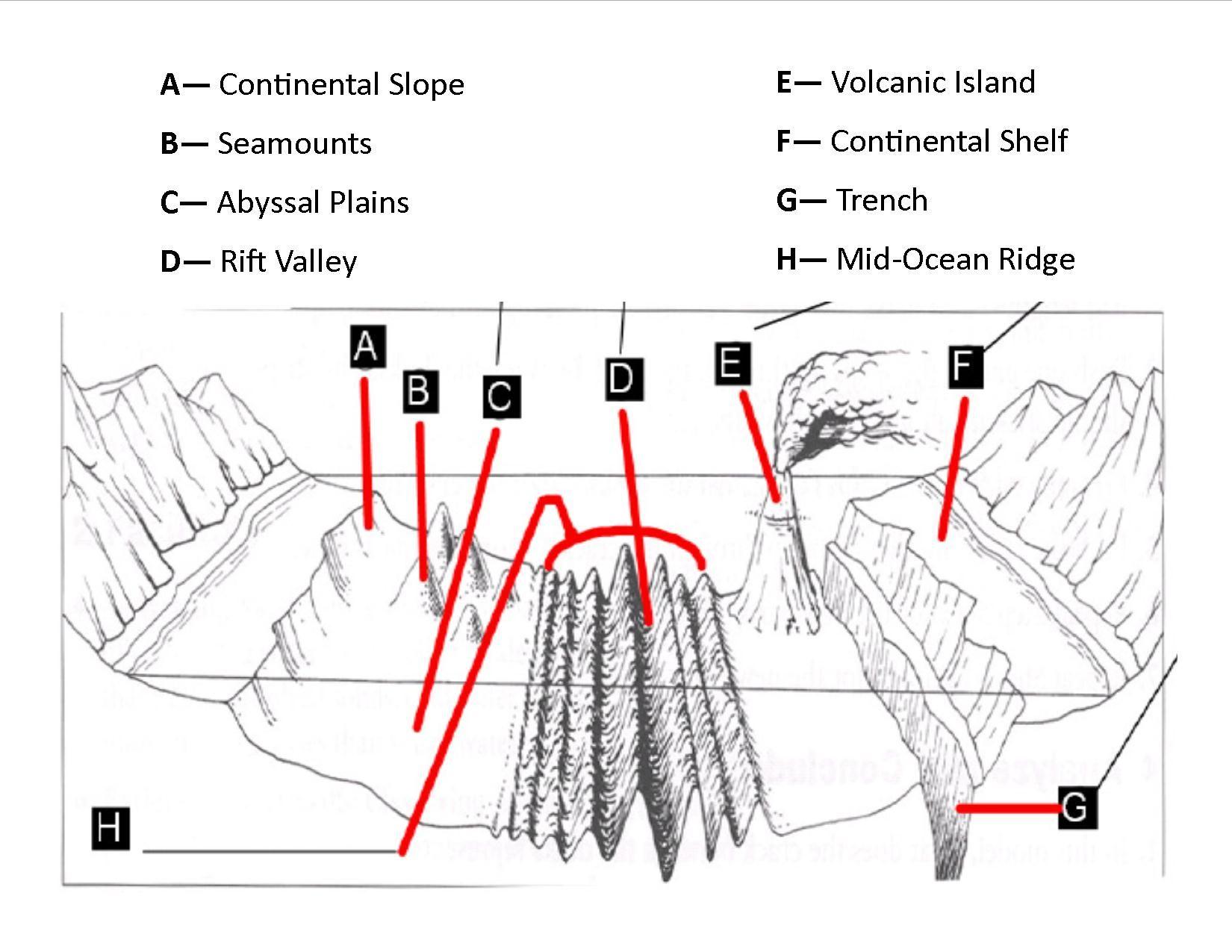 geologic landforms of the ocean floor   geological ocean