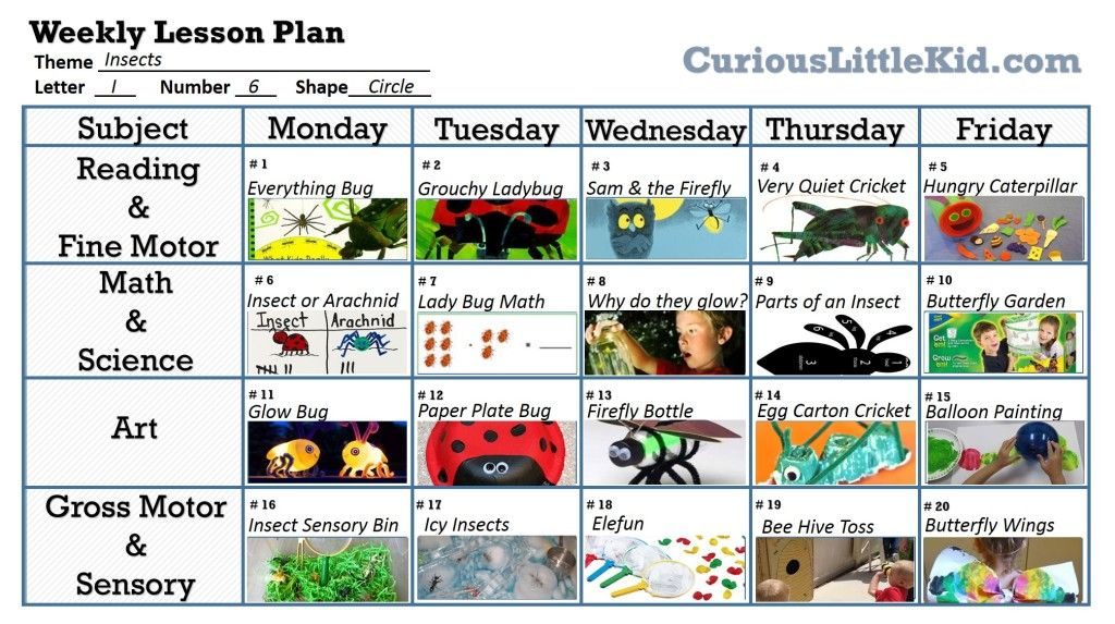 Use This Model Calendar To Help Support The 2 Week Unit Insects Theme Preschool Insects Preschool Preschool Lesson Plan Bug insect lesson plans preschool