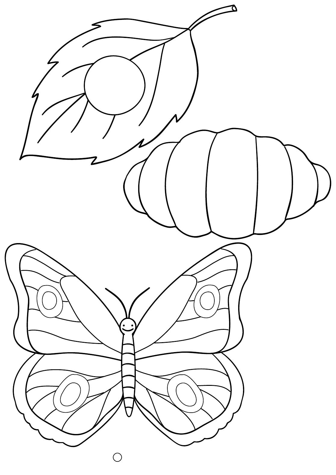 Worksheet Preschool Bugs Rainbows