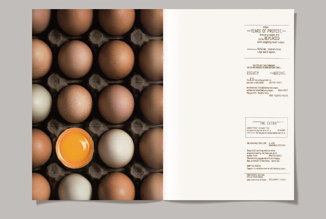 RSPCA|Eggs