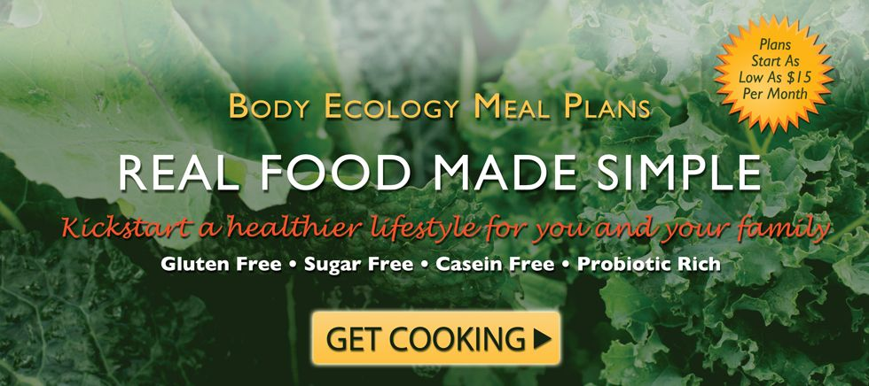 Pin On Body Ecology Diet Bed