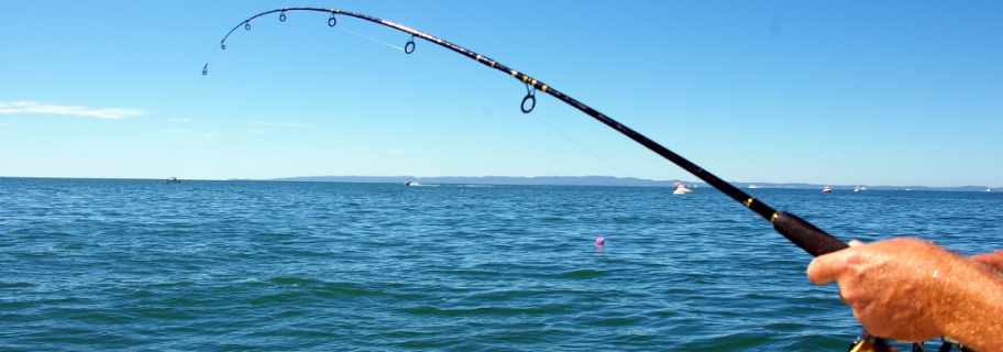 Fishing source
