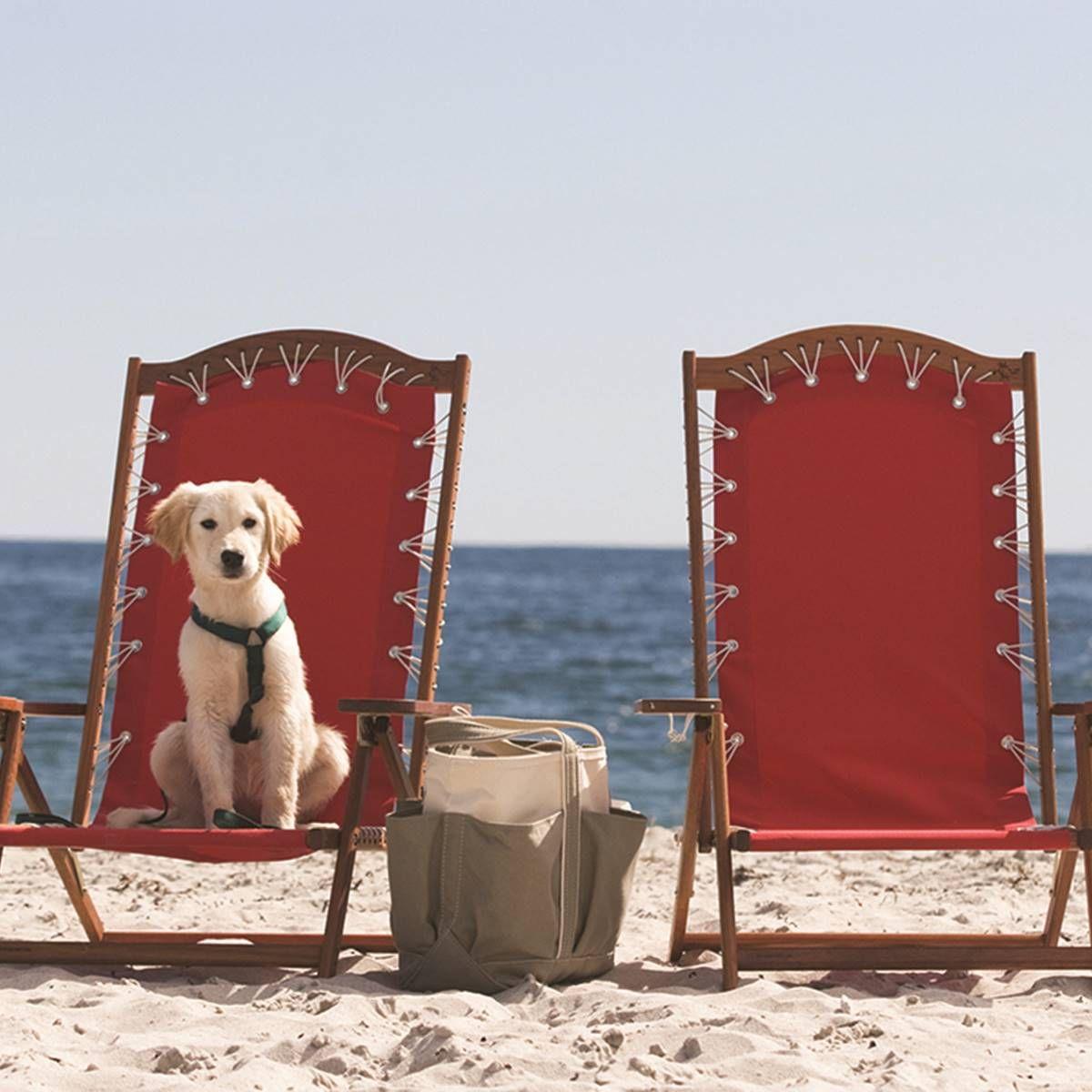 PetFriendly Maine Beach Resort  Inn By The Sea Maine