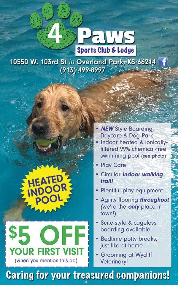 Now Open In The Heart Of Overland Park 4paws Sports Club Lodge Is A Beacon Of Fun For Your 4 Legged Companions Enjoy Bo Pet Clinic Dog Park Indoor Dog Park