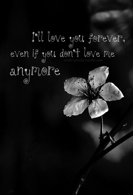 Love You Forevereven If You Dont Love Me Anymore Love