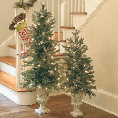 Blue Spruce Potted Tree Ballard Designs Types Of Christmas Trees Christmas Tree Stand Christmas Decorations