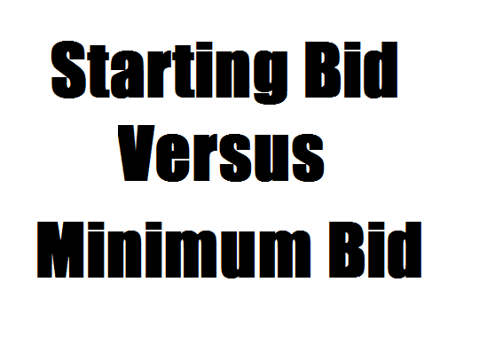 Starting bid vs minimum bid auction dr who and silent for Auction advice