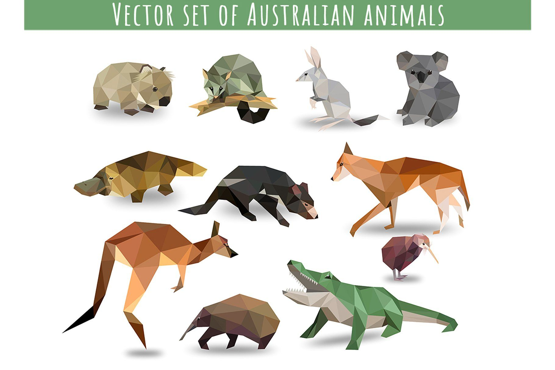 Vector Set Of Australian Animals Animal Icon Australian Animals Animal Illustration