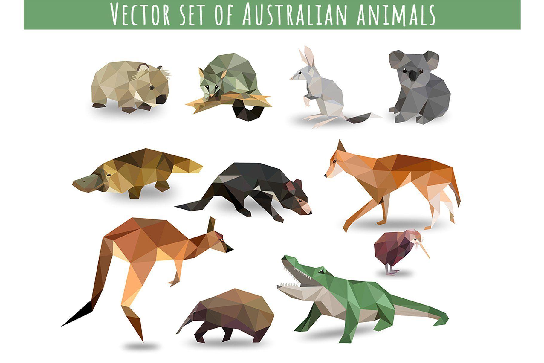 Vector Set Of Australian Animals Animal Icon Australian Animals Animal Illustration