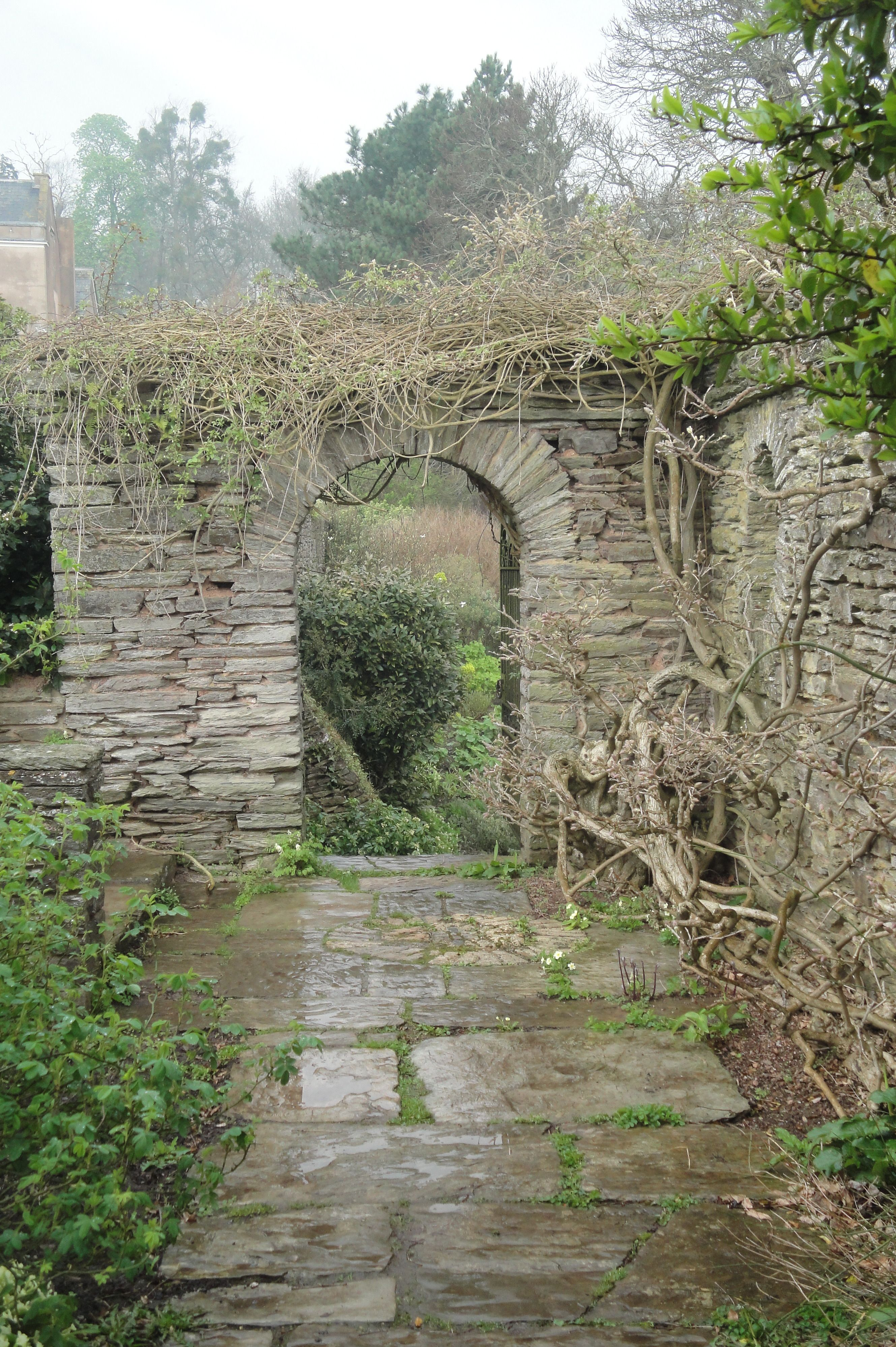 Gertrude Jekyll Wall And Water Gardens